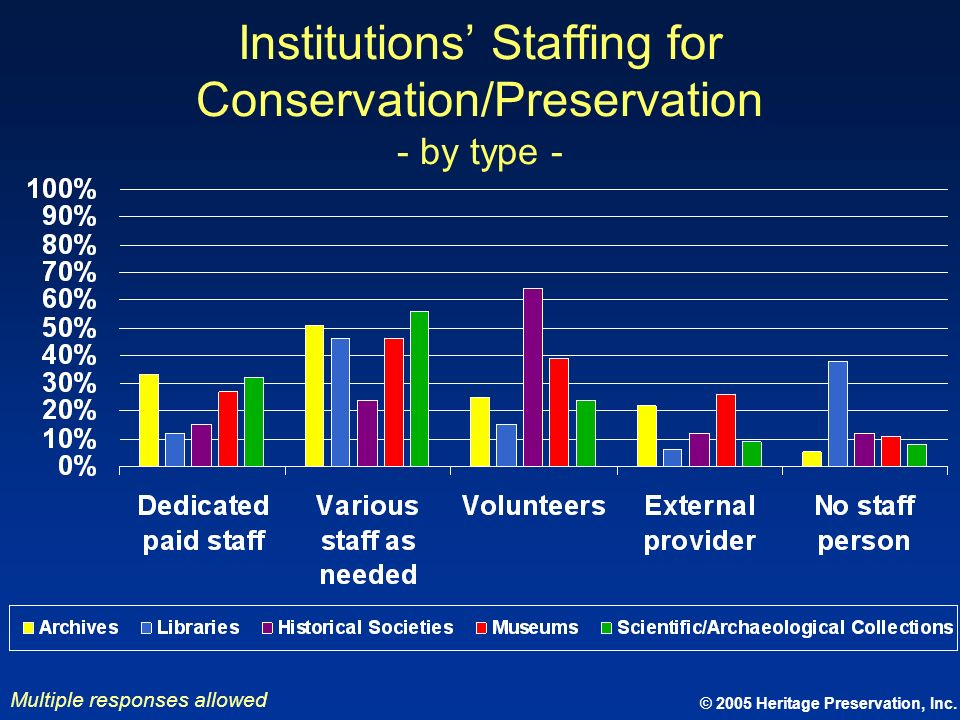 Institutions' Staffing for Conservation/Preservation - by type -