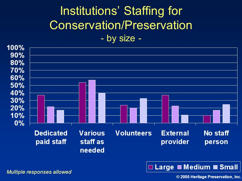 Institutions' Staffing for Conservation/Preservation - by size -