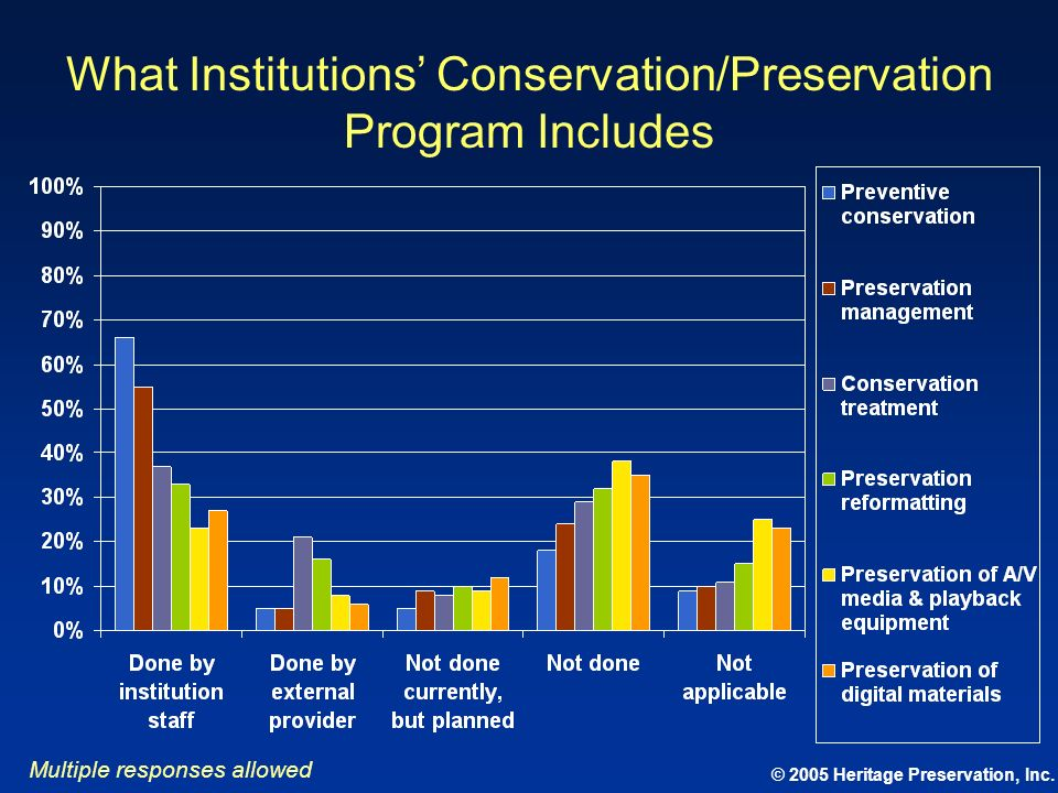 What Institutions' Conservation/Preservation Program Includes