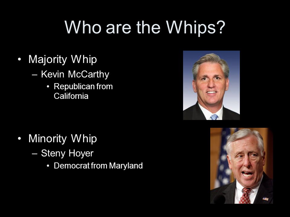 Who are the Whips Majority Whip Minority Whip Kevin McCarthy