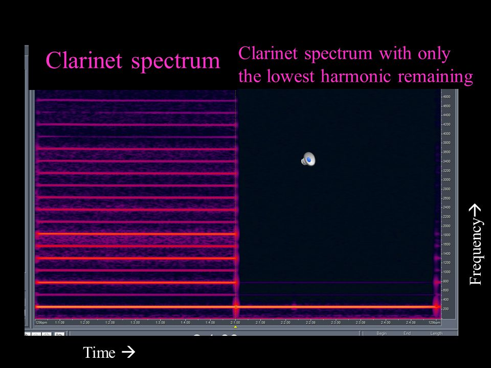 Clarinet spectrum Clarinet spectrum with only
