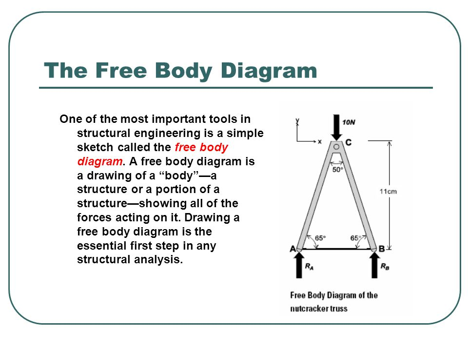The Free Body Diagram