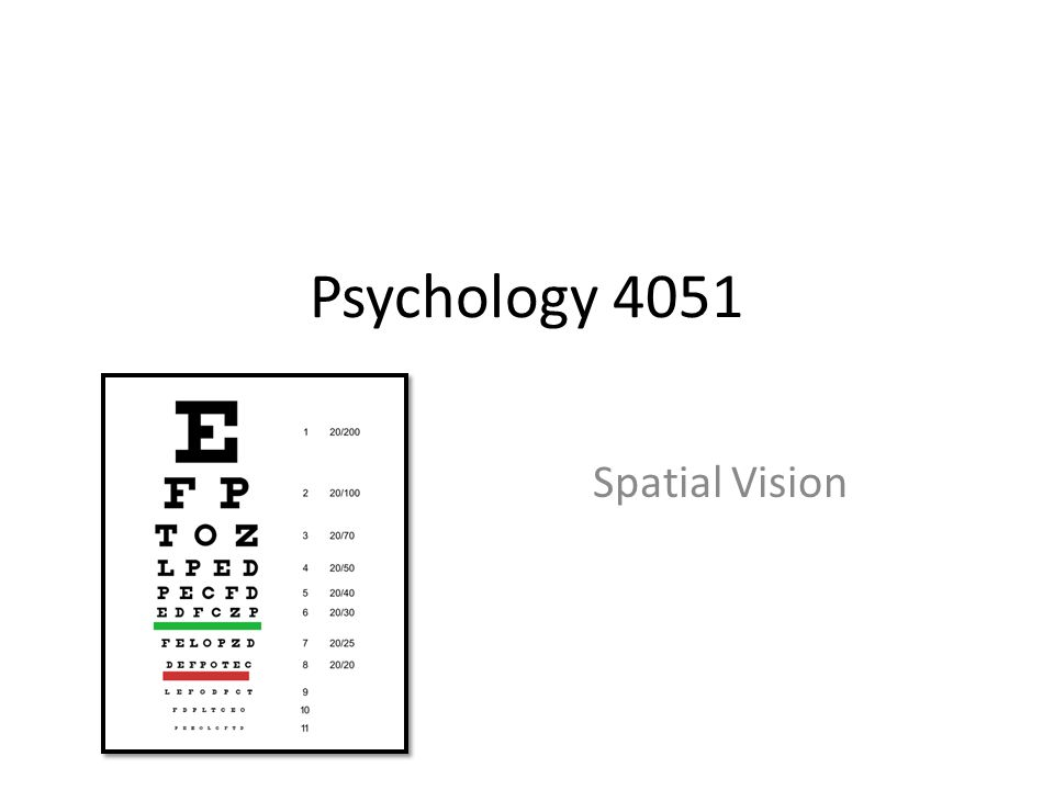 Psychology 4051 Spatial Vision