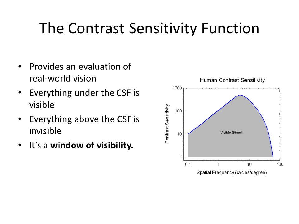 The Contrast Sensitivity Function