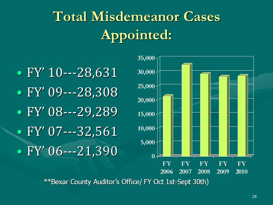 Total Misdemeanor Cases Appointed:
