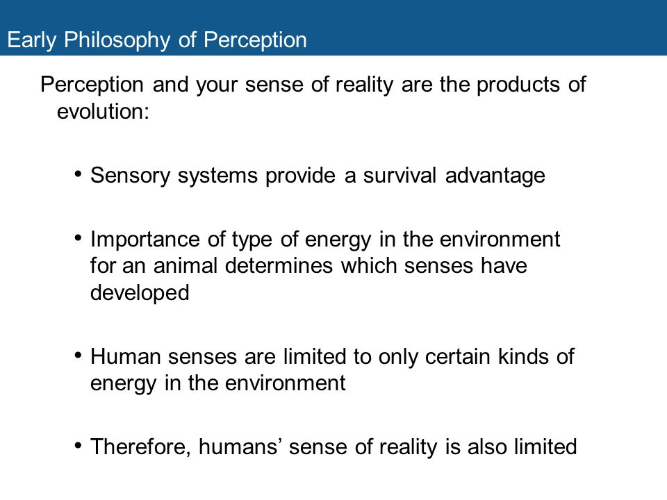 Early Philosophy of Perception