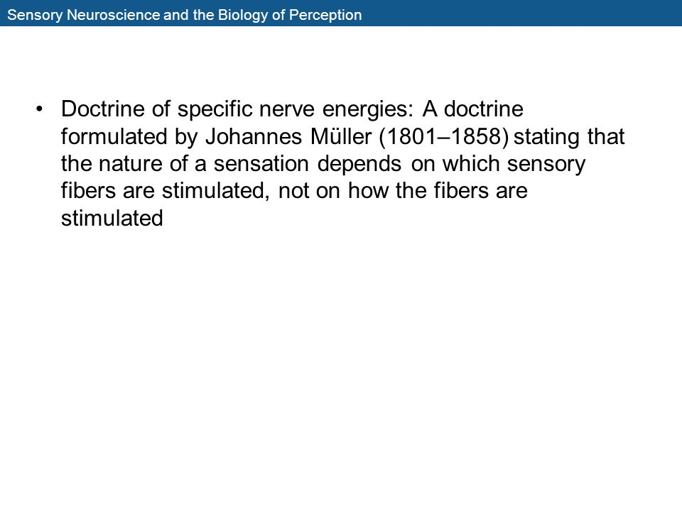 Sensory Neuroscience and the Biology of Perception