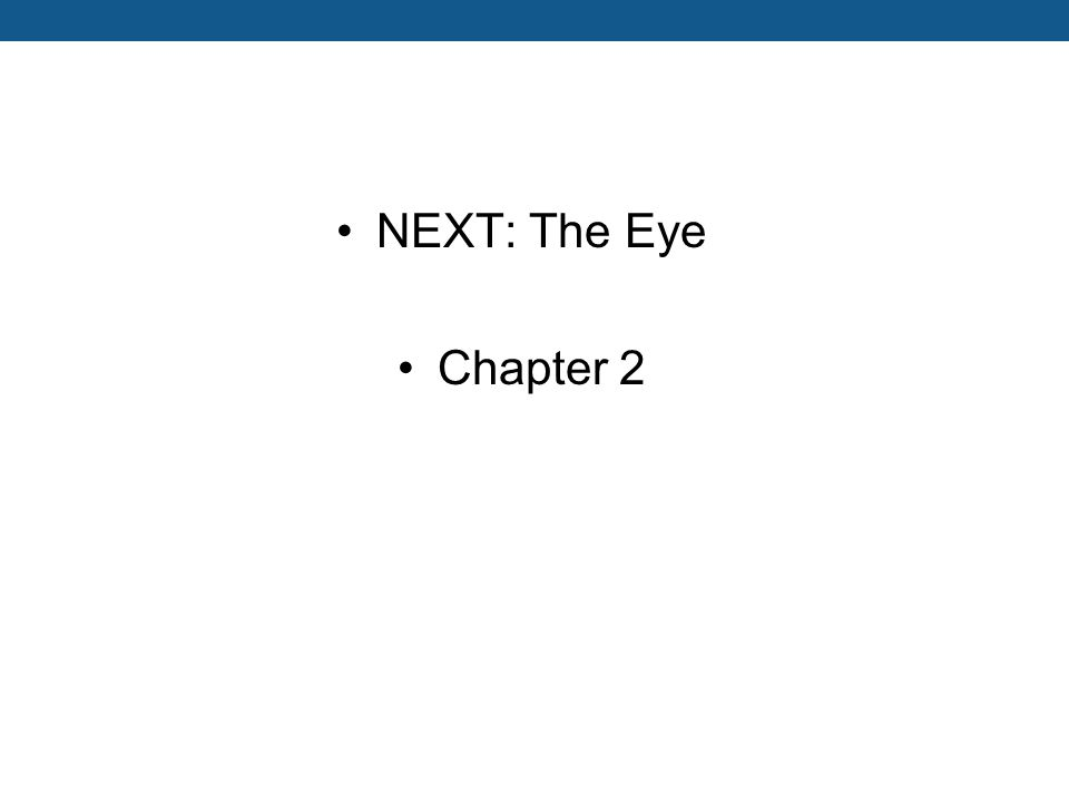 NEXT: The Eye Chapter 2
