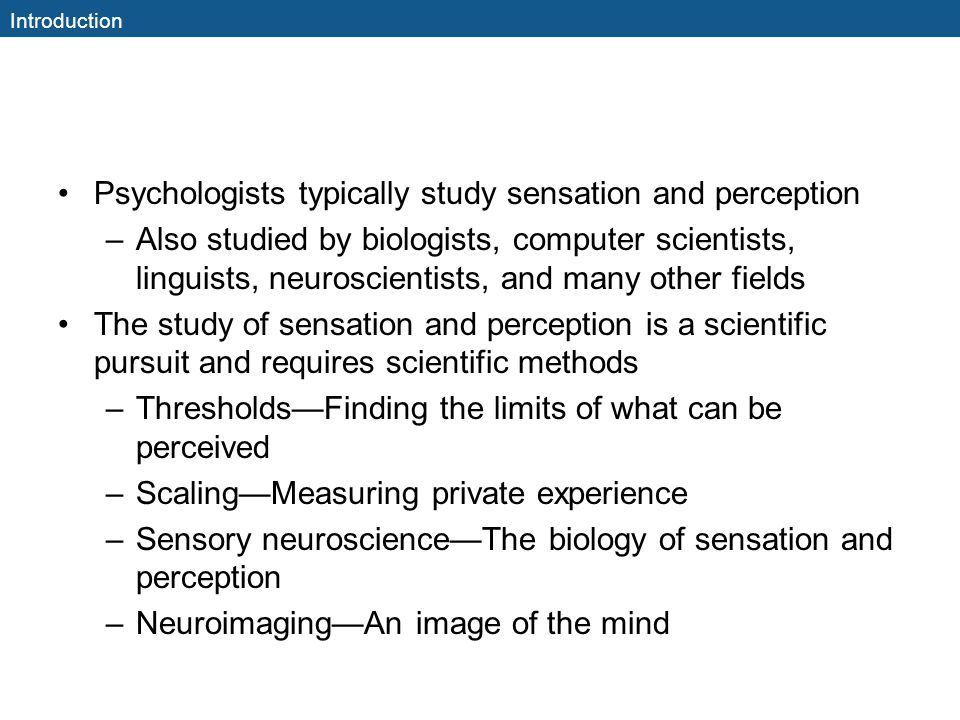 Psychologists typically study sensation and perception
