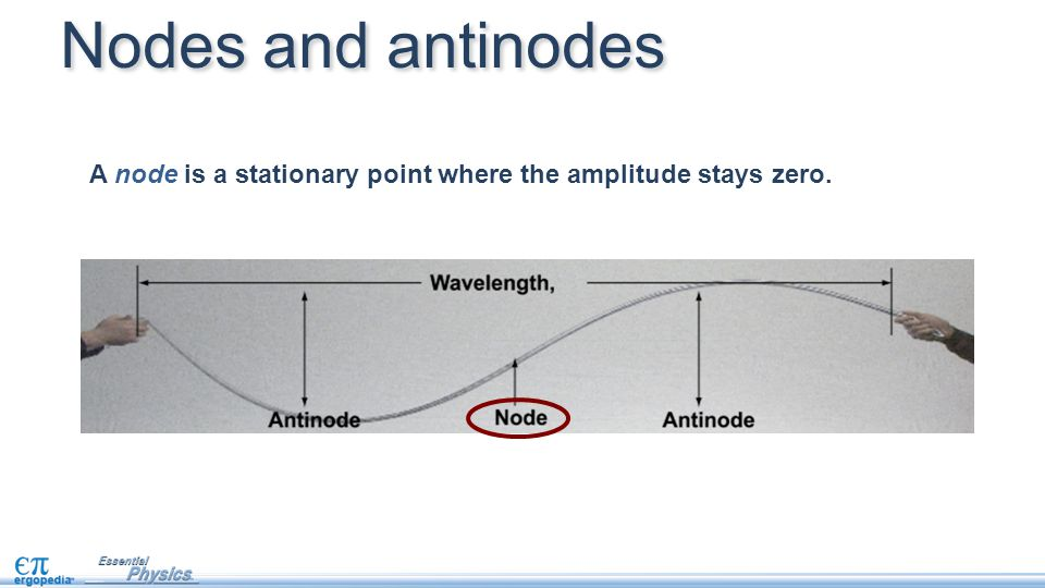 Nodes and antinodes A node is a stationary point where the amplitude stays zero.