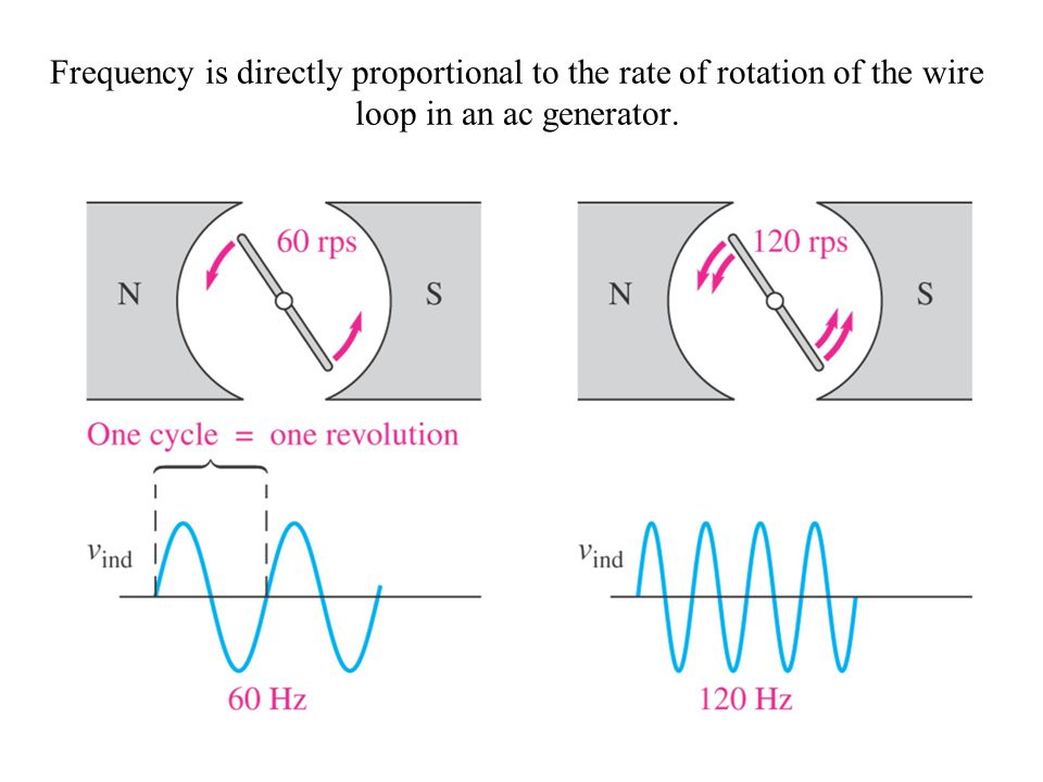 Frequency is directly proportional to the rate of rotation of the wire loop in an ac generator.