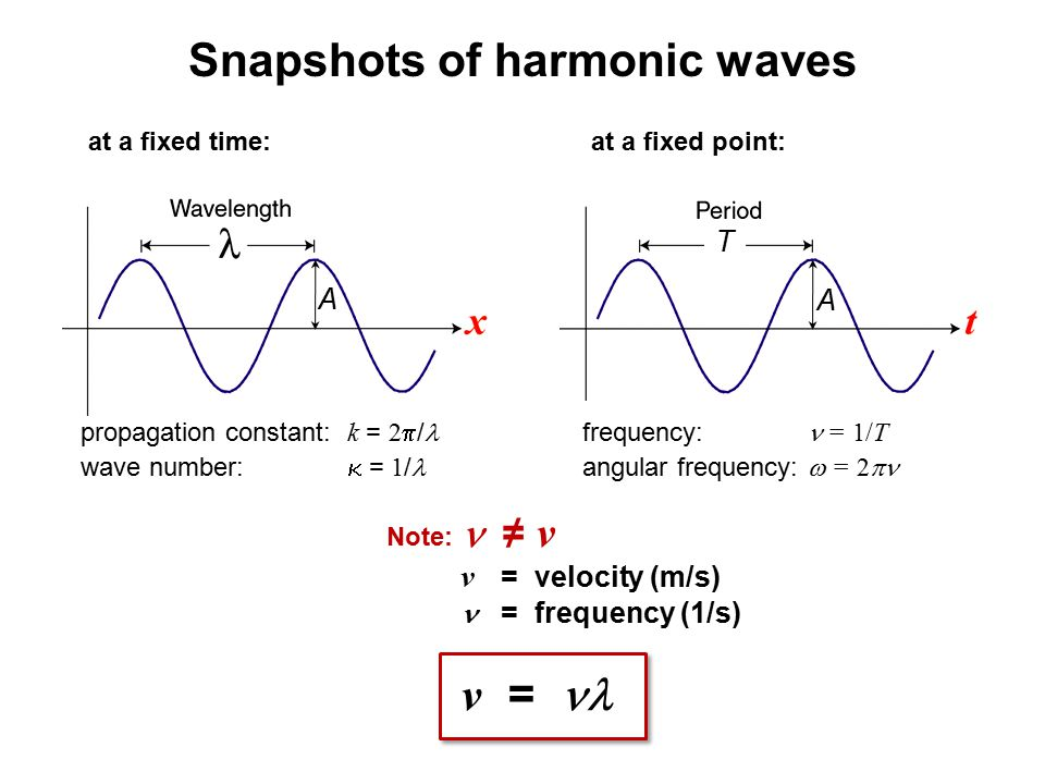 Snapshots of harmonic waves