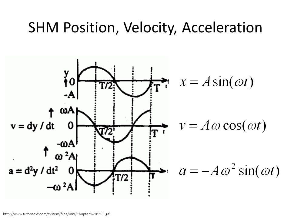 SHM Position, Velocity, Acceleration