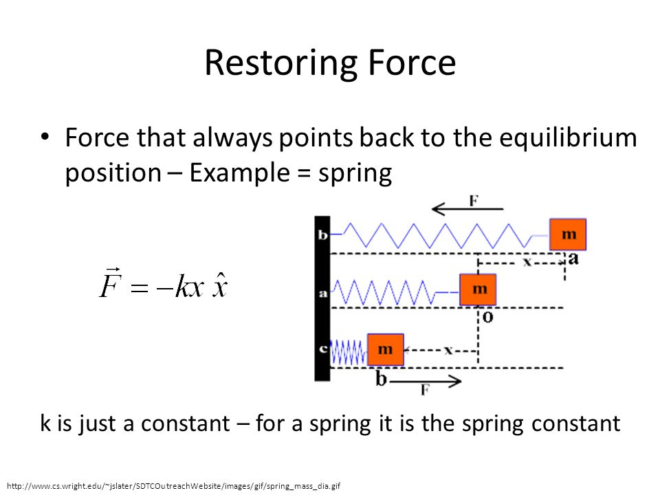 Restoring Force Force that always points back to the equilibrium position – Example = spring.