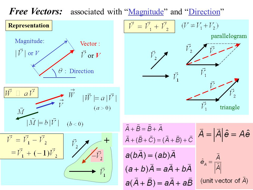 Free Vectors: associated with Magnitude and Direction