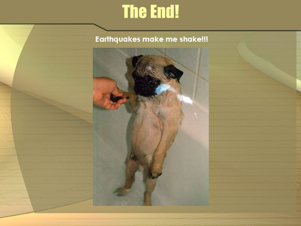 Earthquakes make me shake!!!