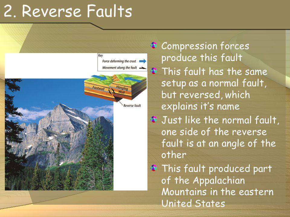 2. Reverse Faults Compression forces produce this fault