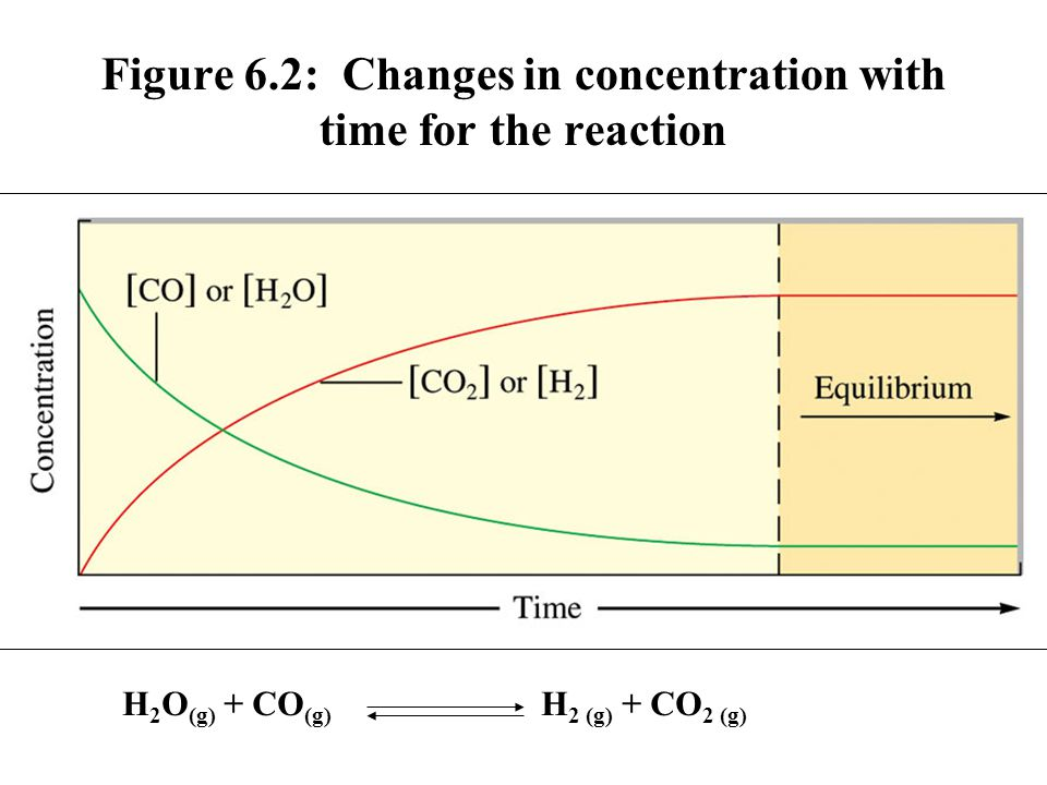 Figure 6.2: Changes in concentration with time for the reaction