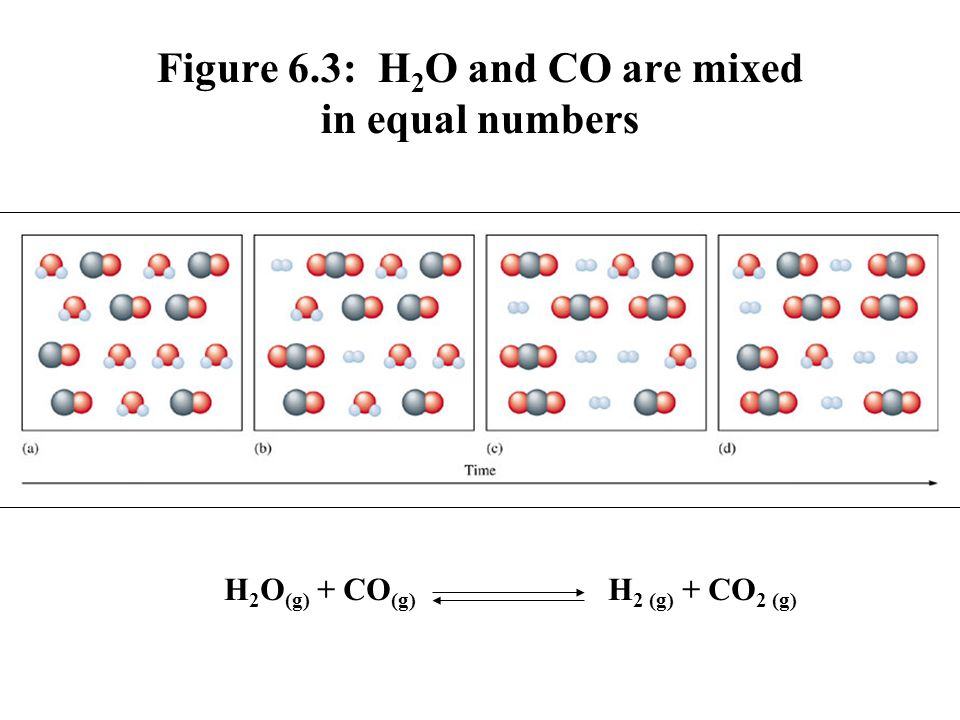 Figure 6.3: H2O and CO are mixed in equal numbers