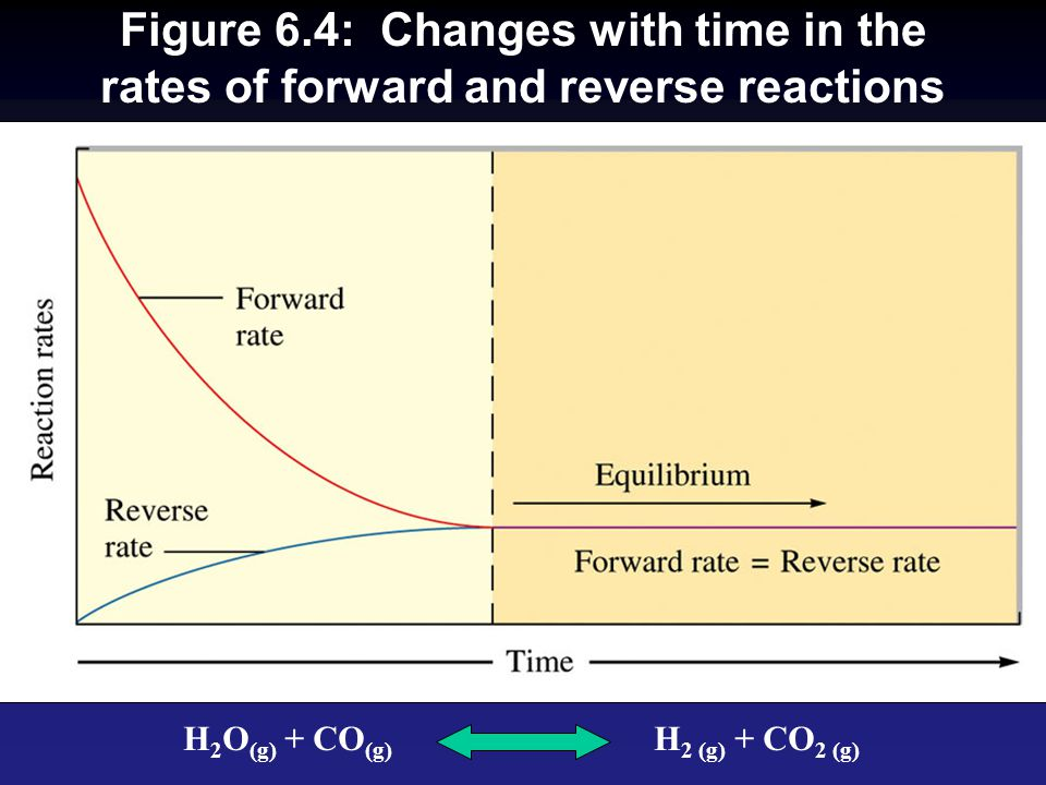Figure 6.4: Changes with time in the rates of forward and reverse reactions