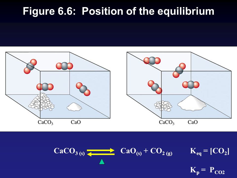 Figure 6.6: Position of the equilibrium