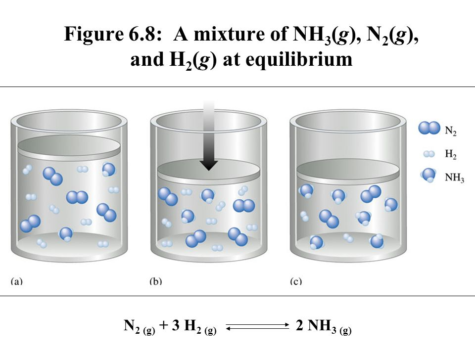 Figure 6.8: A mixture of NH3(g), N2(g), and H2(g) at equilibrium