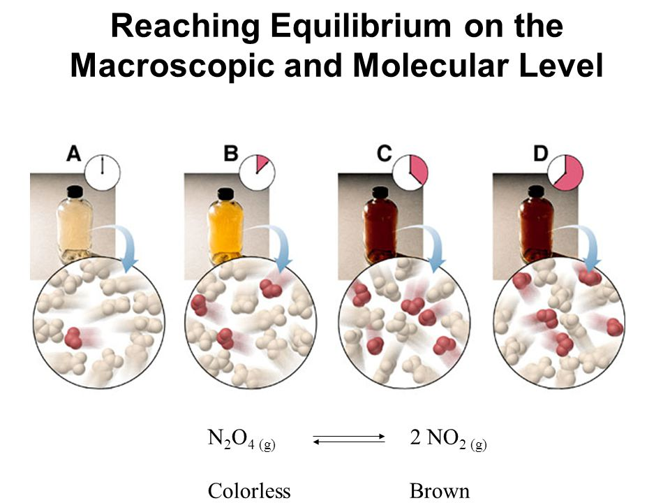 Reaching Equilibrium on the Macroscopic and Molecular Level