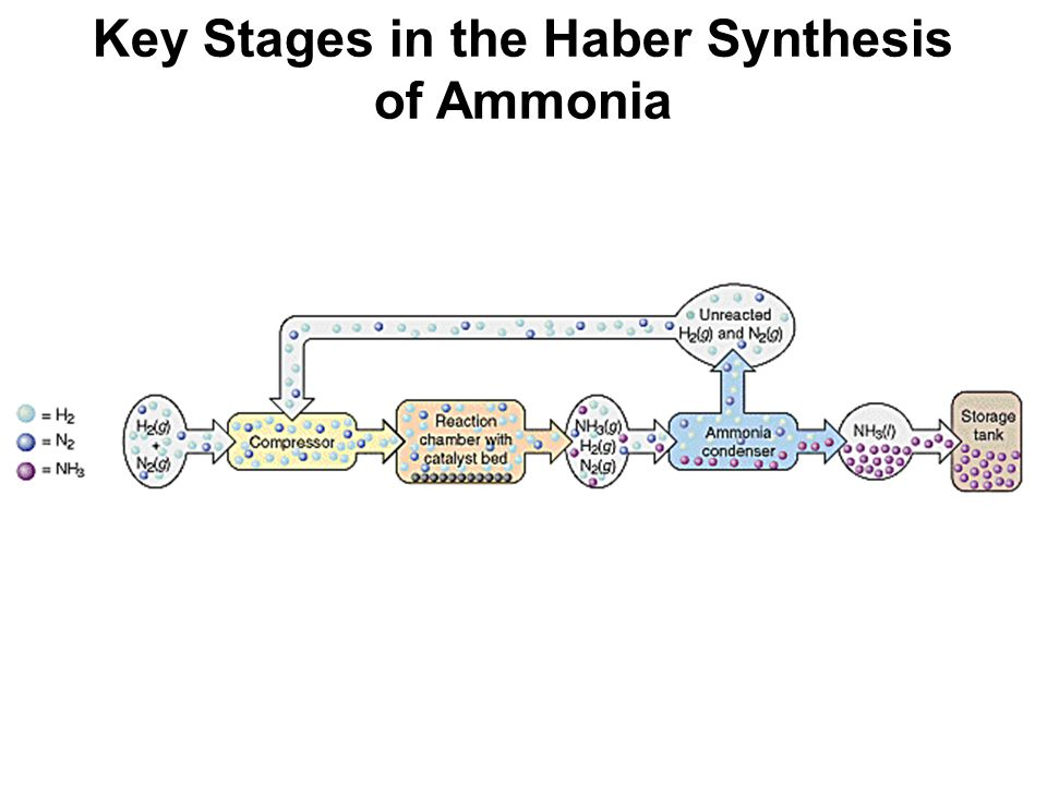 Key Stages in the Haber Synthesis of Ammonia