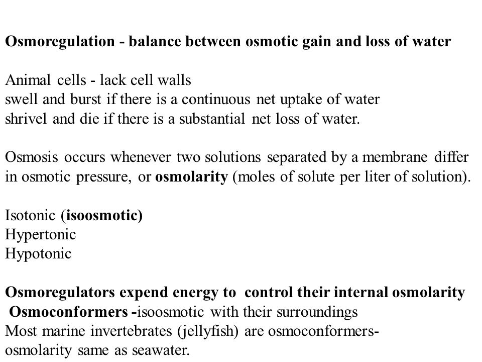 Osmoregulation - balance between osmotic gain and loss of water