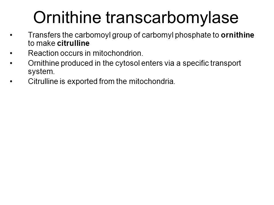 Ornithine transcarbomylase