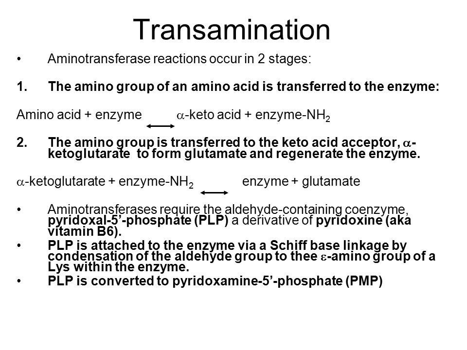 Transamination Aminotransferase reactions occur in 2 stages: