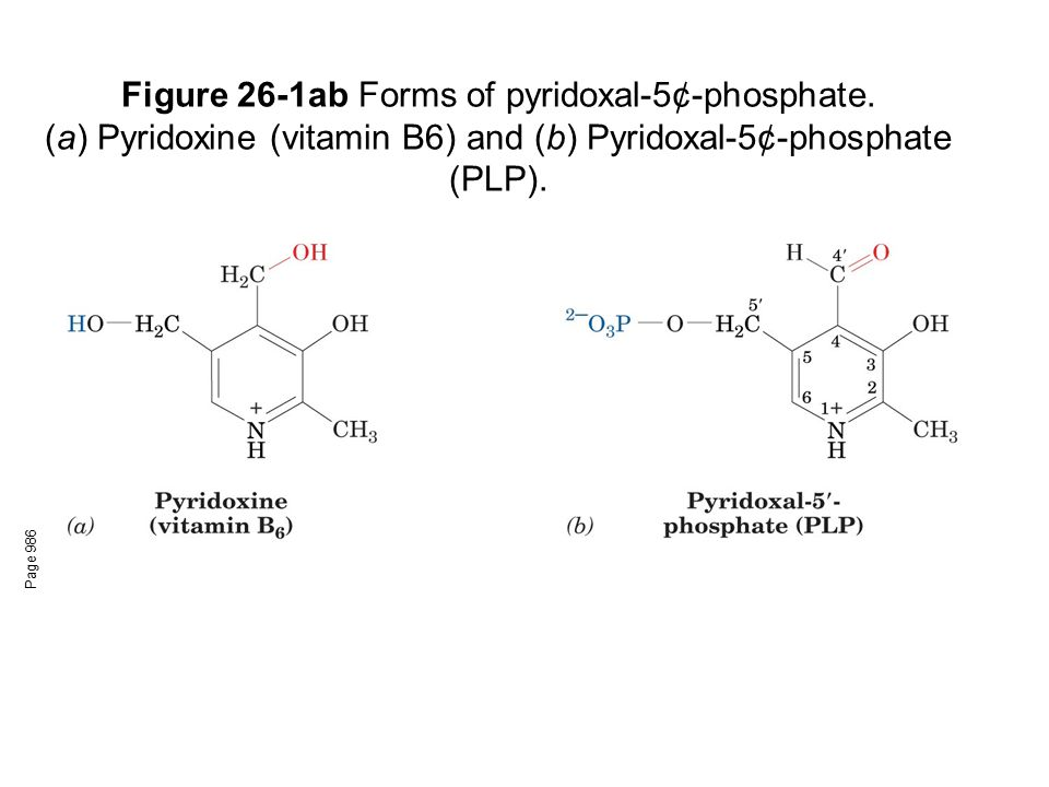 Figure 26-1ab Forms of pyridoxal-5¢-phosphate