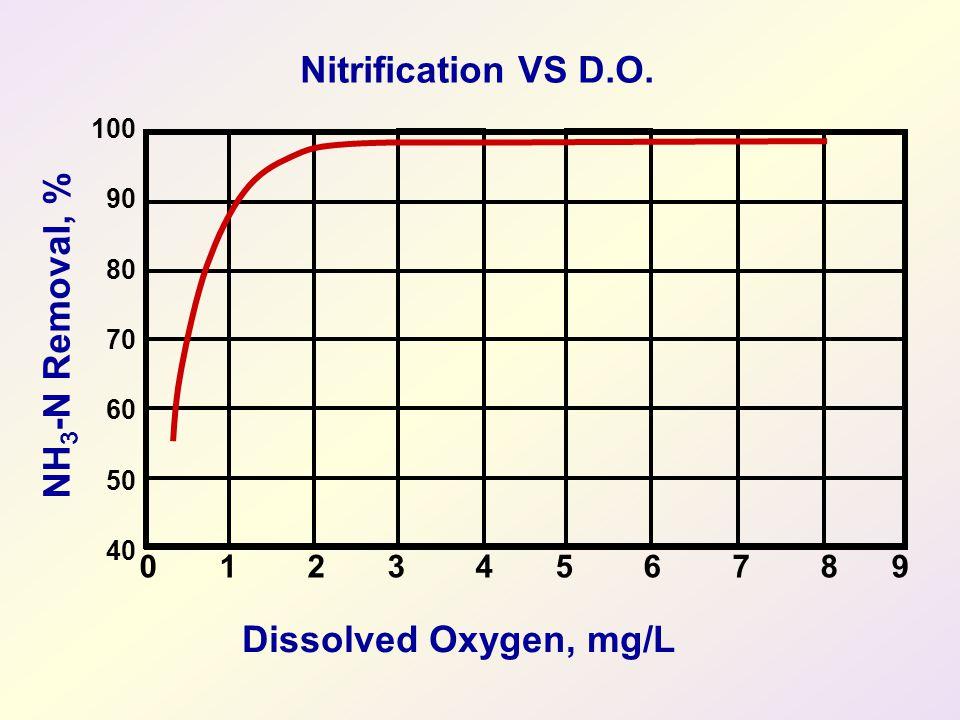 Nitrification VS D.O. NH3-N Removal, % Dissolved Oxygen, mg/L