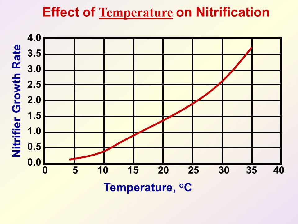 Effect of Temperature on Nitrification