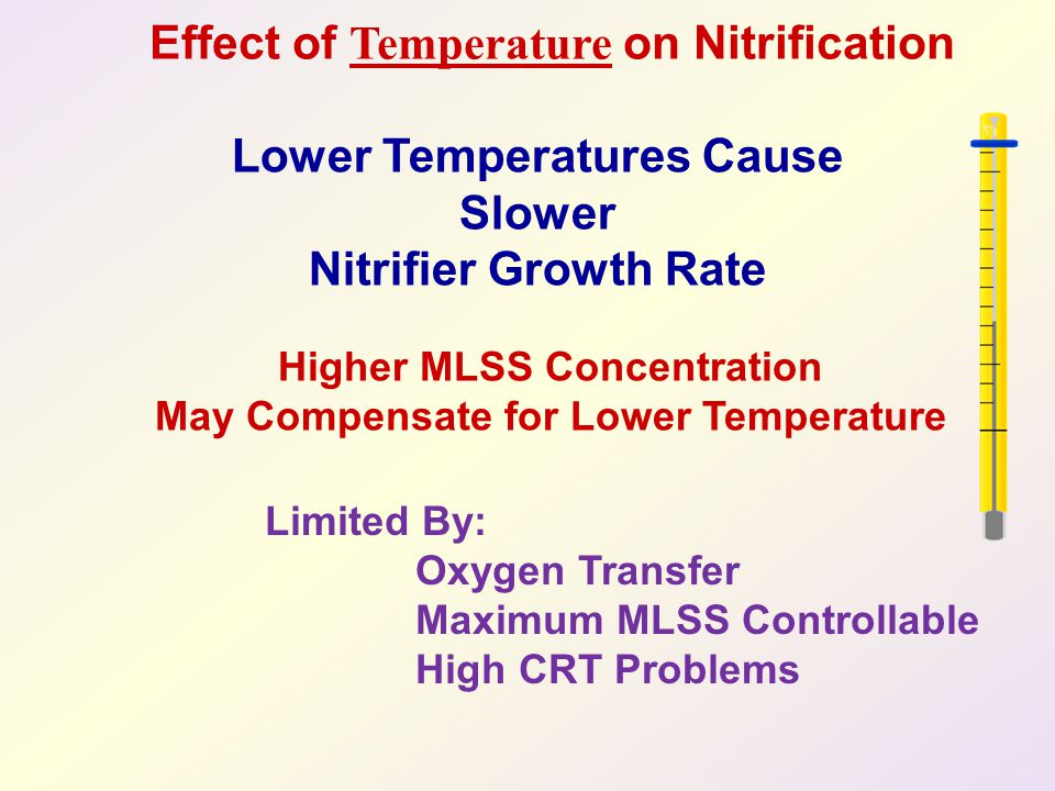 Lower Temperatures Cause Slower Nitrifier Growth Rate
