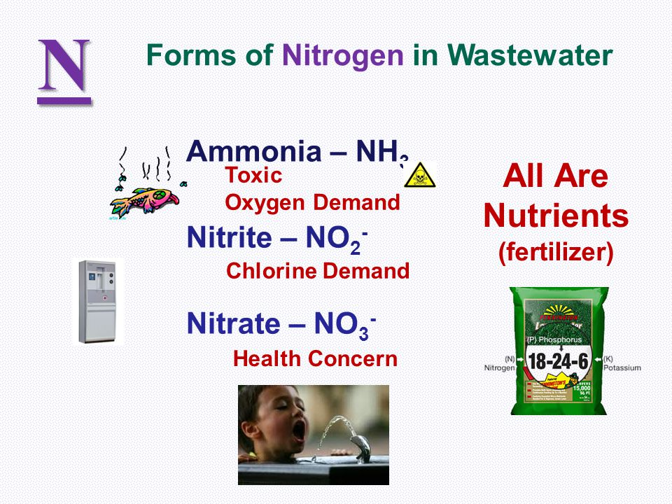 N All Are Nutrients Forms of Nitrogen in Wastewater Ammonia – NH3