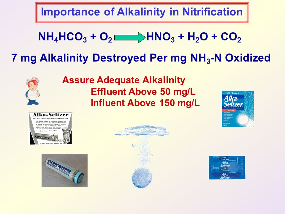 Importance of Alkalinity in Nitrification