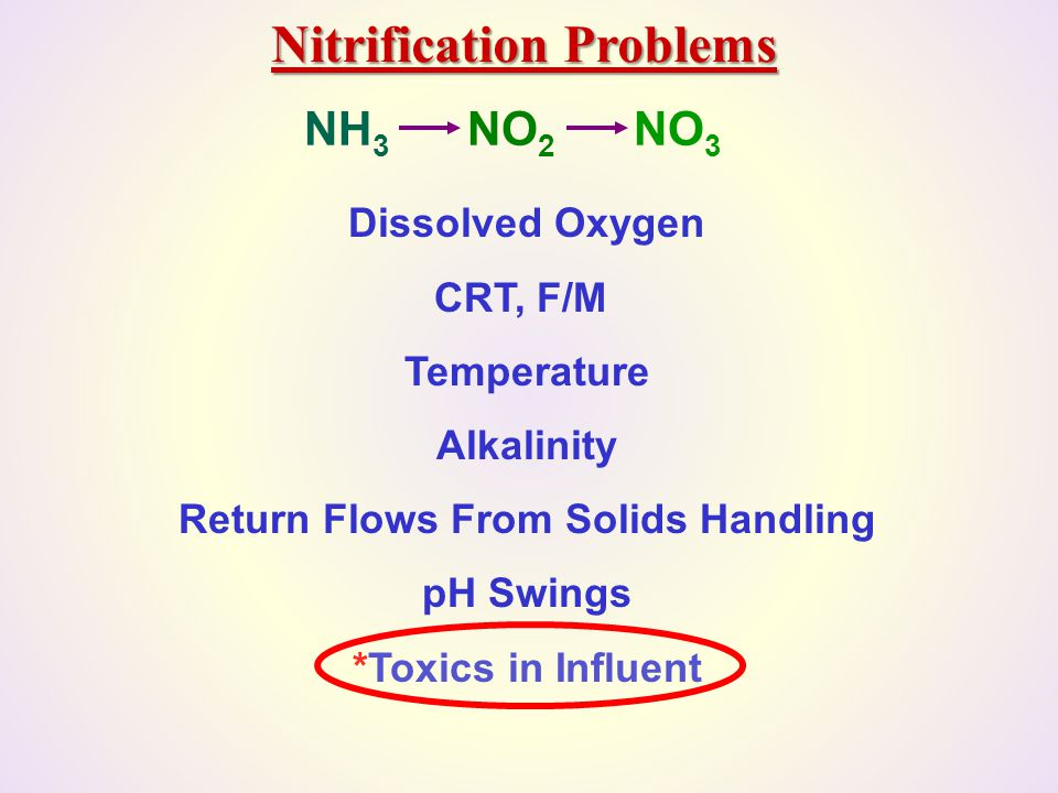 Nitrification Problems Return Flows From Solids Handling