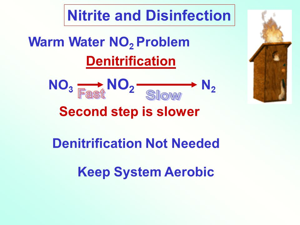Nitrite and Disinfection