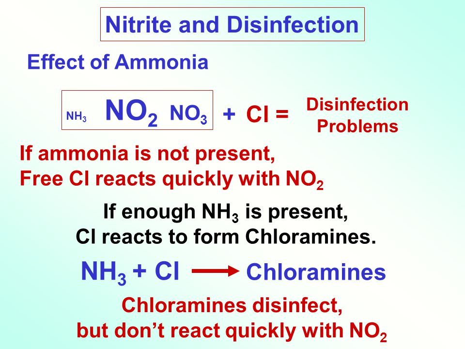NH3 + Cl Nitrite and Disinfection + Cl = Chloramines Effect of Ammonia