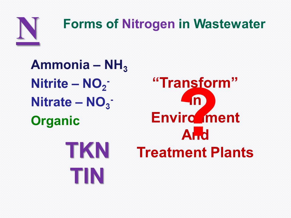 N TKN TIN Transform In Environment And Treatment Plants