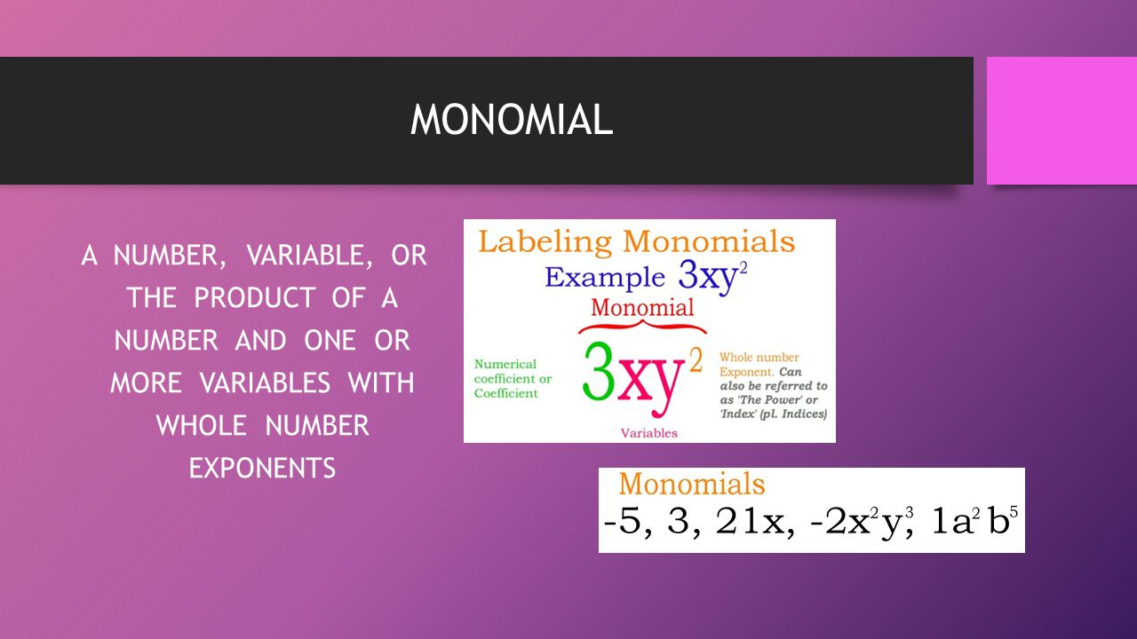MONOMIAL A NUMBER, VARIABLE, OR THE PRODUCT OF A NUMBER AND ONE OR MORE VARIABLES WITH WHOLE NUMBER EXPONENTS