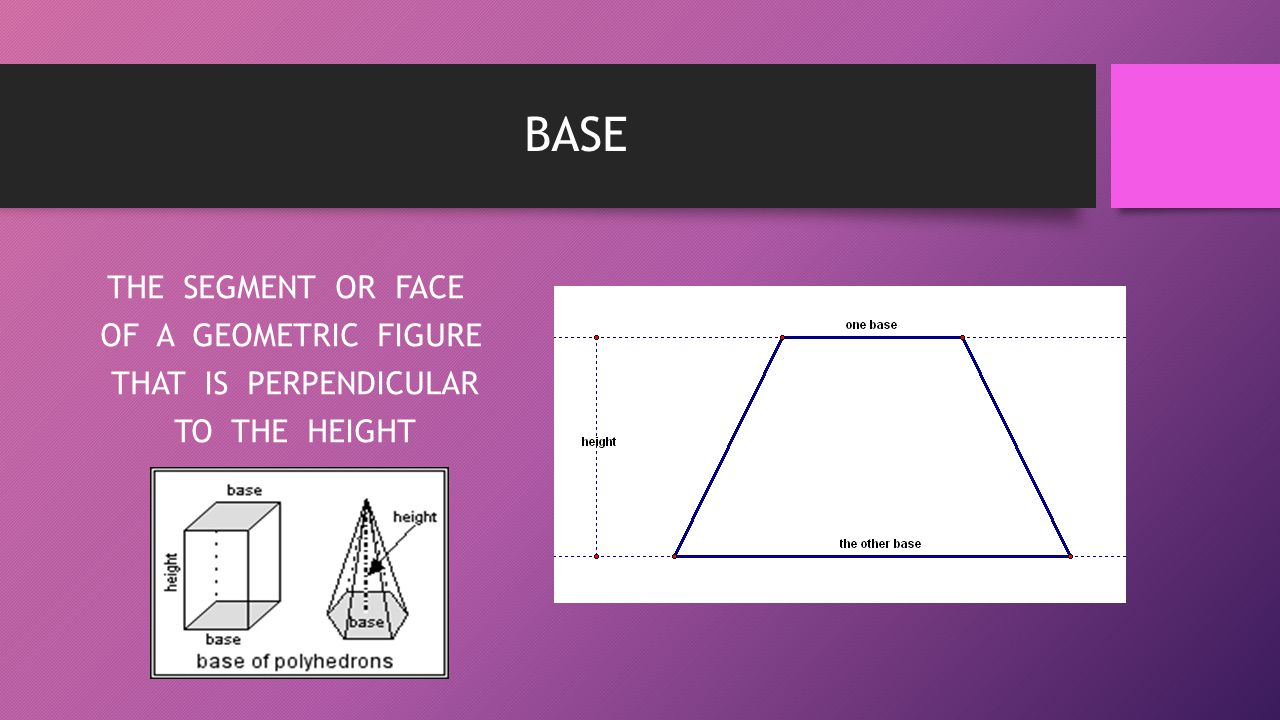 BASE THE SEGMENT OR FACE OF A GEOMETRIC FIGURE THAT IS PERPENDICULAR TO THE HEIGHT