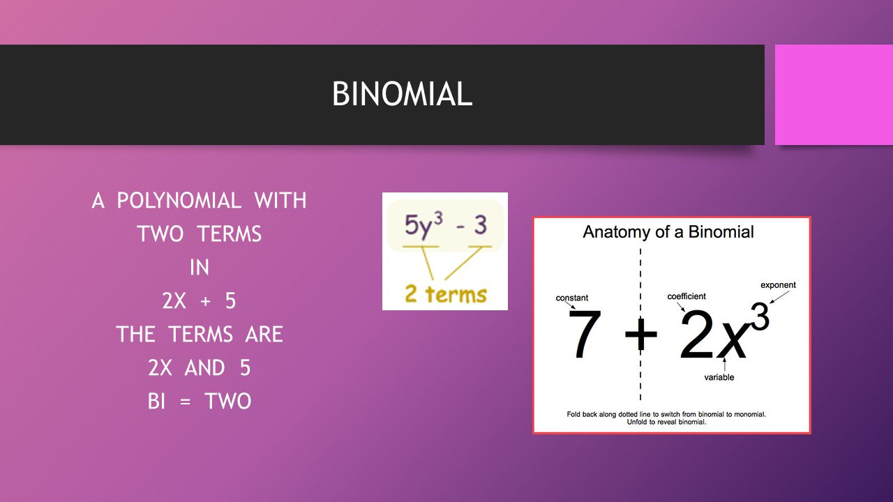 A POLYNOMIAL WITH TWO TERMS IN 2X + 5 THE TERMS ARE 2X AND 5 BI = TWO