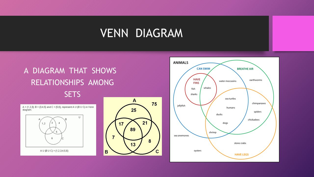 A DIAGRAM THAT SHOWS RELATIONSHIPS AMONG SETS