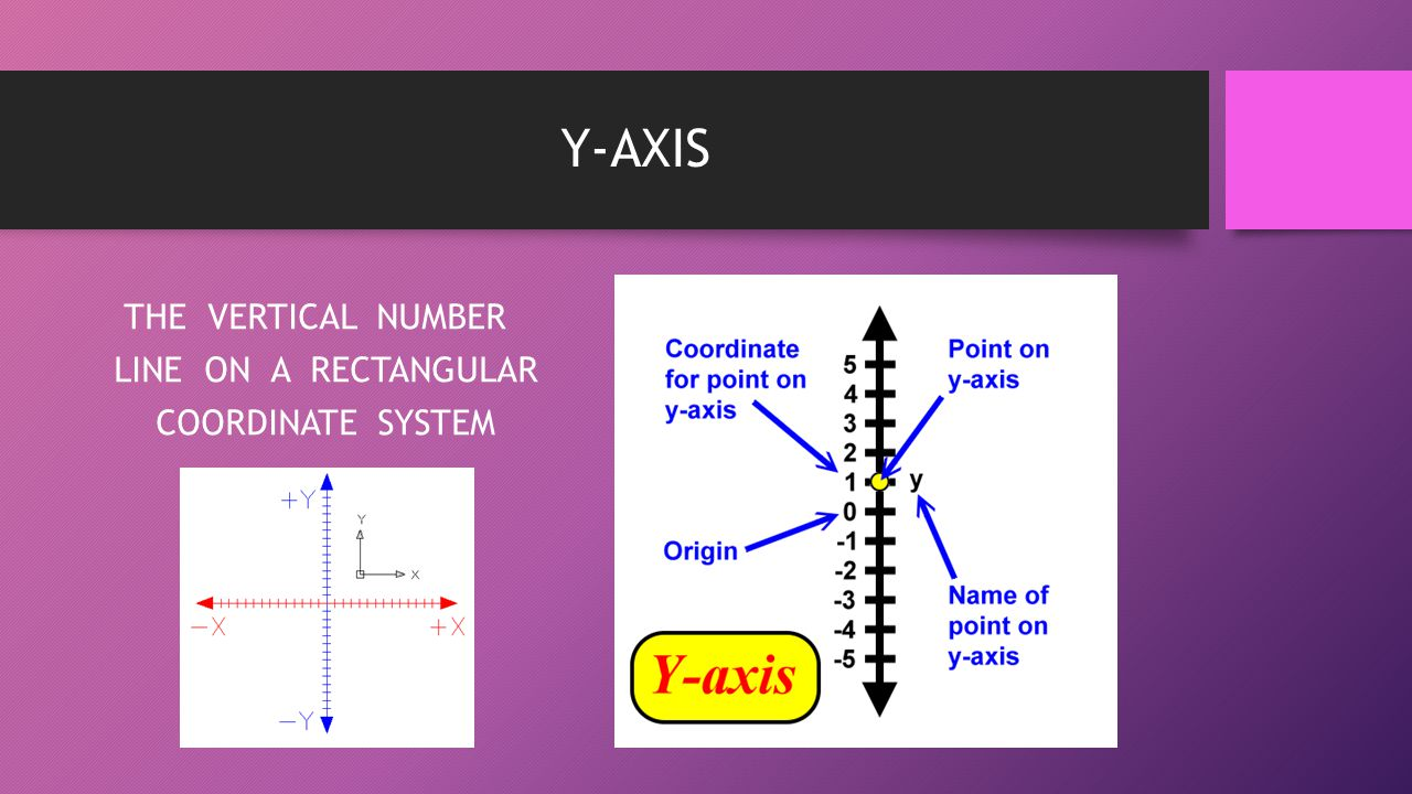 THE VERTICAL NUMBER LINE ON A RECTANGULAR COORDINATE SYSTEM