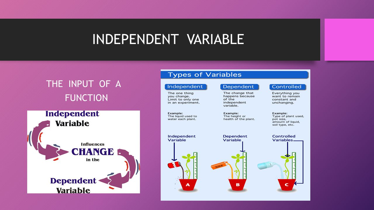 INDEPENDENT VARIABLE THE INPUT OF A FUNCTION