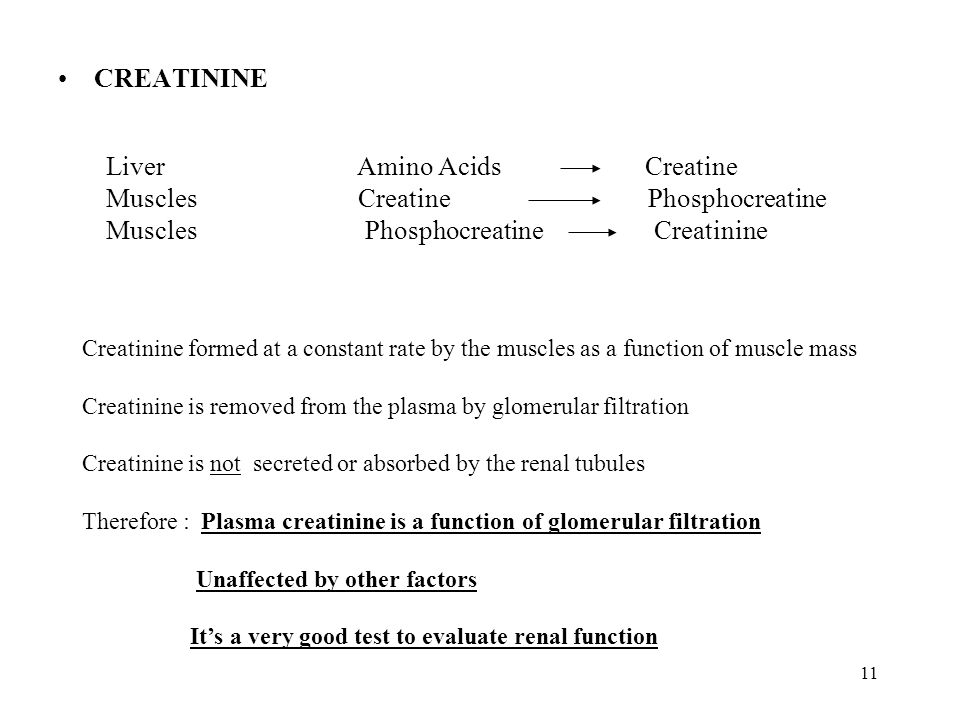 Liver Amino Acids Creatine Muscles Creatine Phosphocreatine