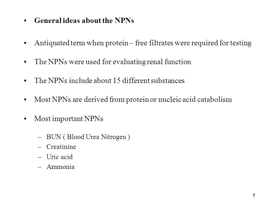 General ideas about the NPNs