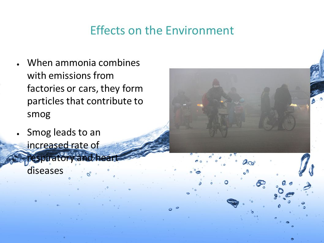 Effects on the Environment